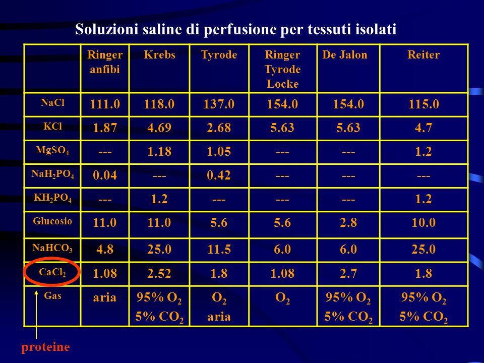 Soluzioni saline di perfusione per tessuti isolati
