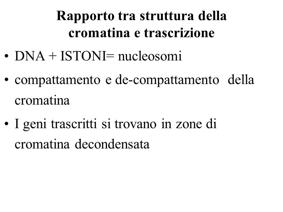 Rapporto tra struttura della cromatina e trascrizione