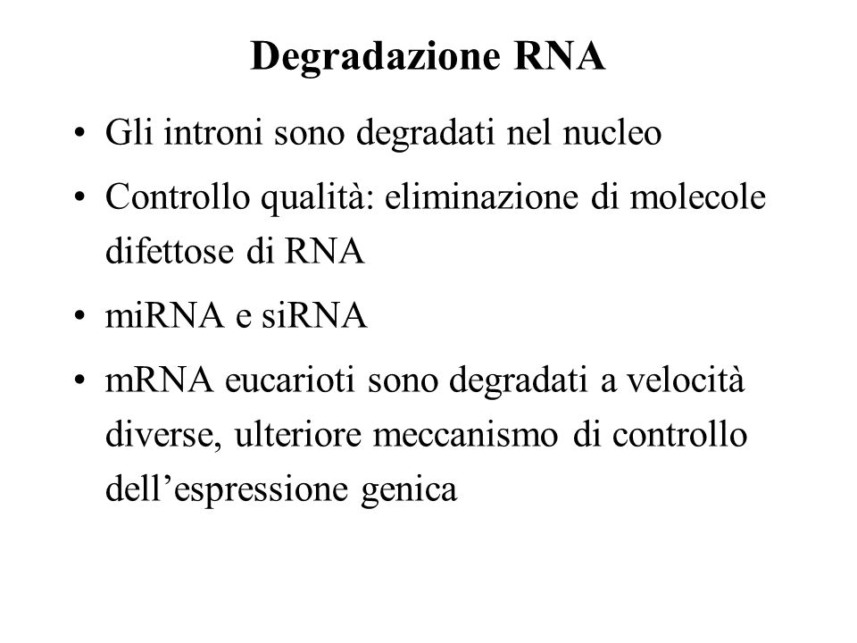 Degradazione RNA Gli introni sono degradati nel nucleo