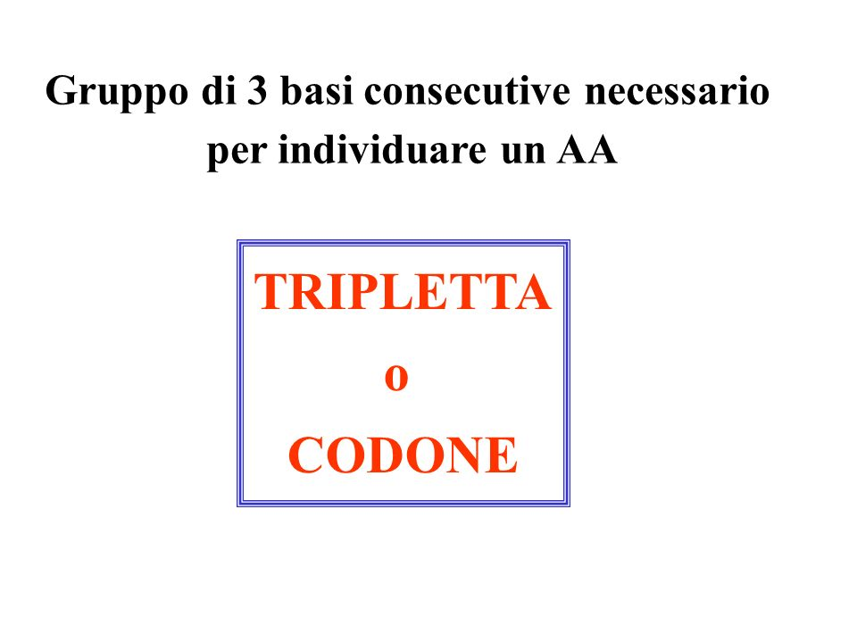 Gruppo di 3 basi consecutive necessario