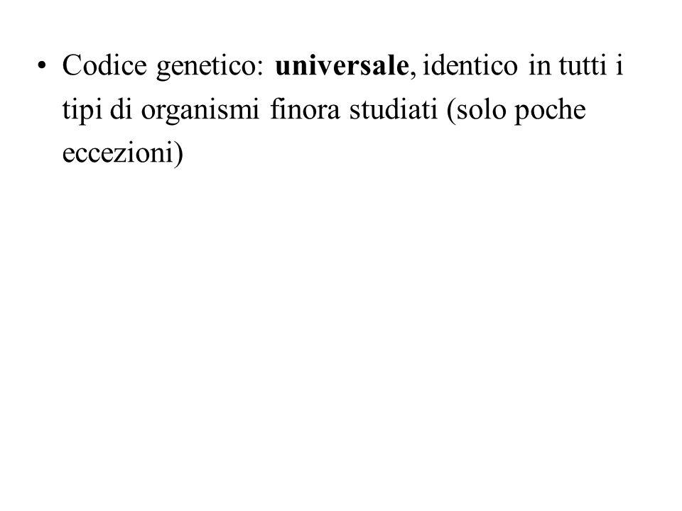 Codice genetico: universale, identico in tutti i tipi di organismi finora studiati (solo poche eccezioni)