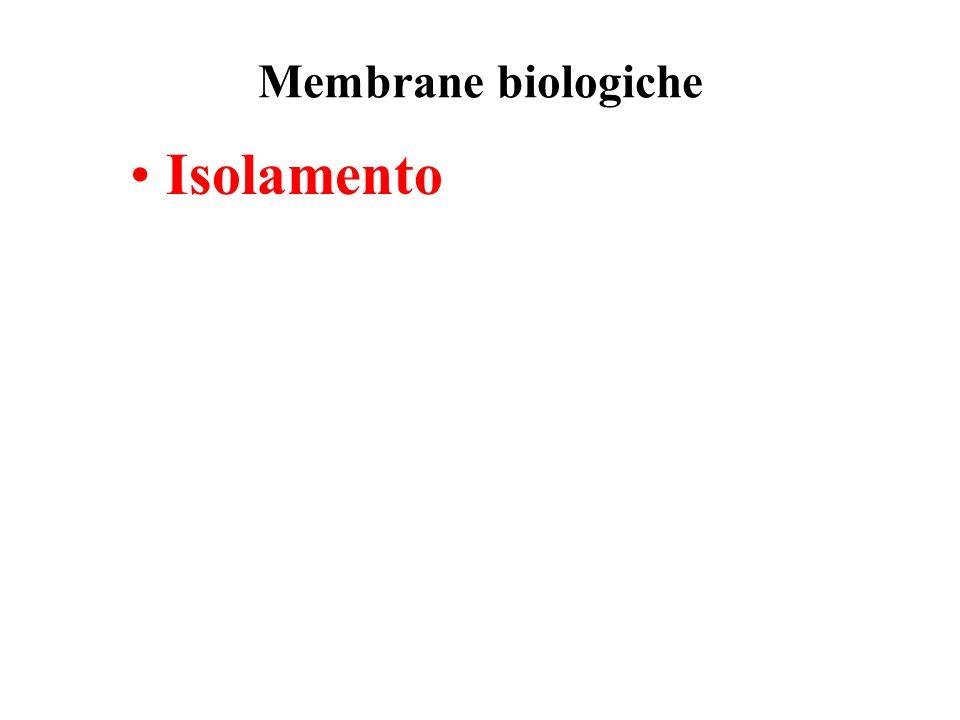 Membrane biologiche Isolamento