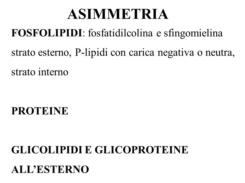 ASIMMETRIA FOSFOLIPIDI: fosfatidilcolina e sfingomielina strato esterno, P-lipidi con carica negativa o neutra, strato interno.