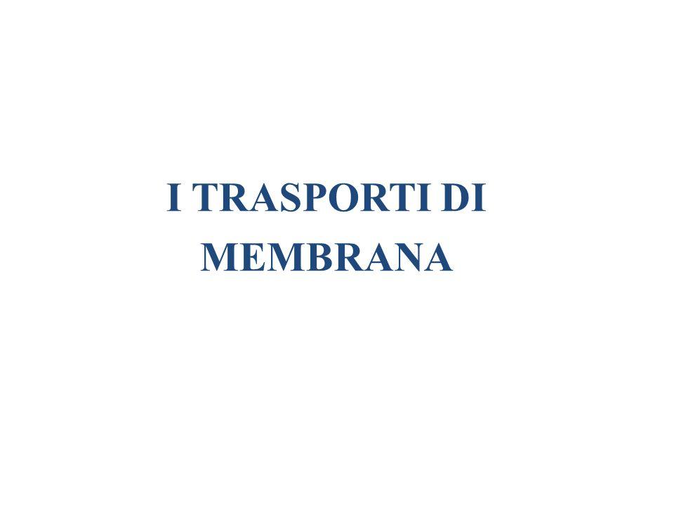 I TRASPORTI DI MEMBRANA