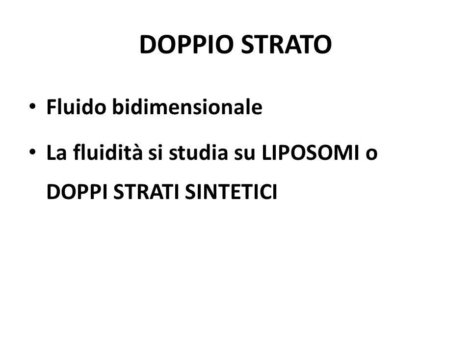 DOPPIO STRATO Fluido bidimensionale