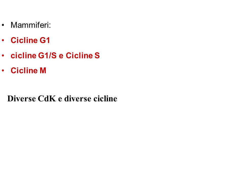 Diverse CdK e diverse cicline