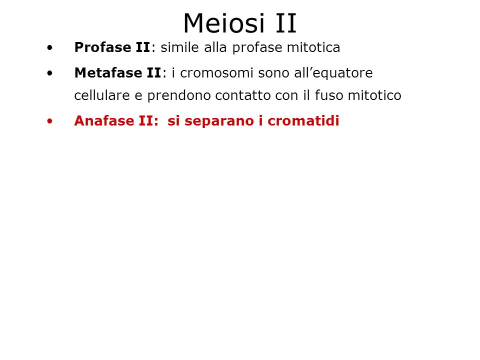 Meiosi II Profase II: simile alla profase mitotica