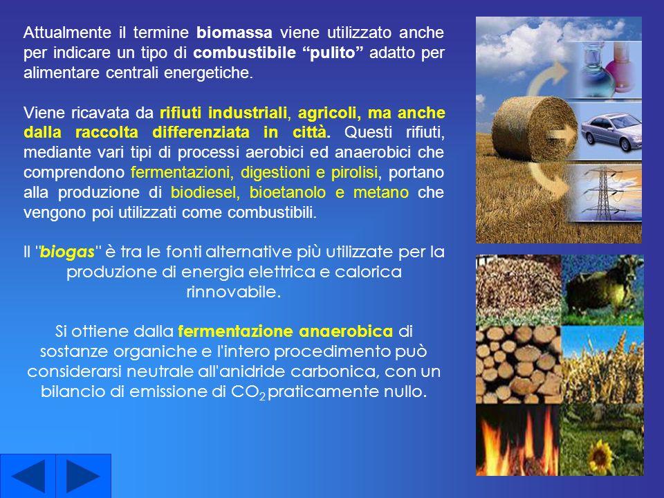 Attualmente il termine biomassa viene utilizzato anche per indicare un tipo di combustibile pulito adatto per alimentare centrali energetiche.