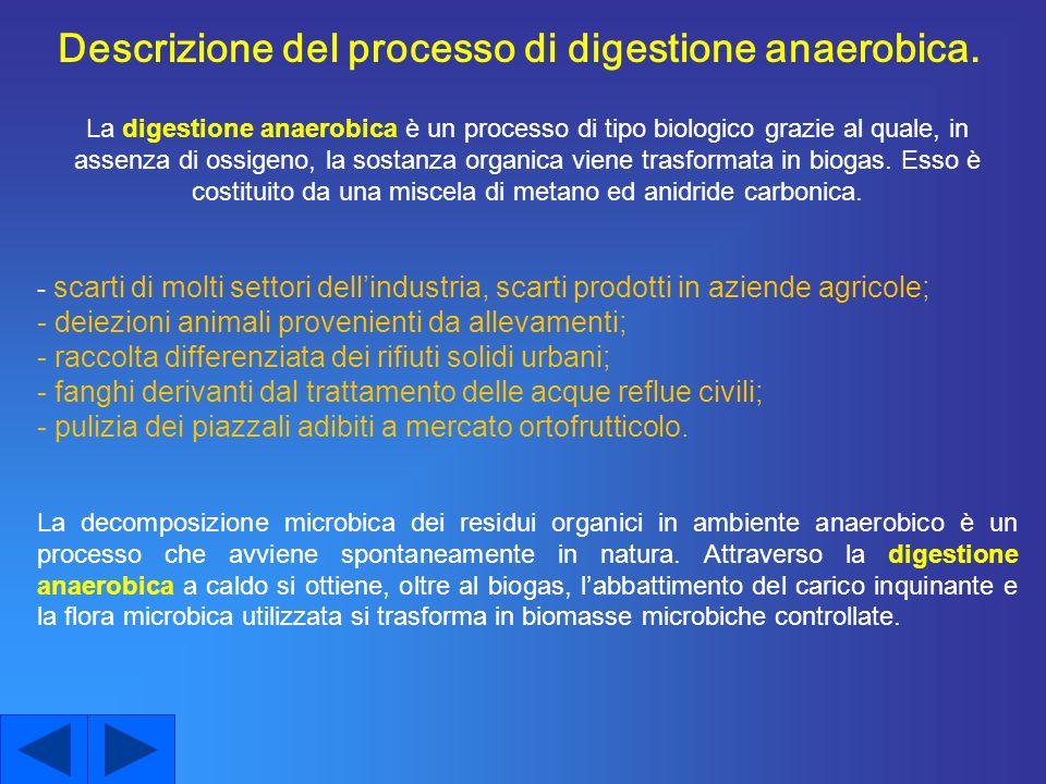 Descrizione del processo di digestione anaerobica.
