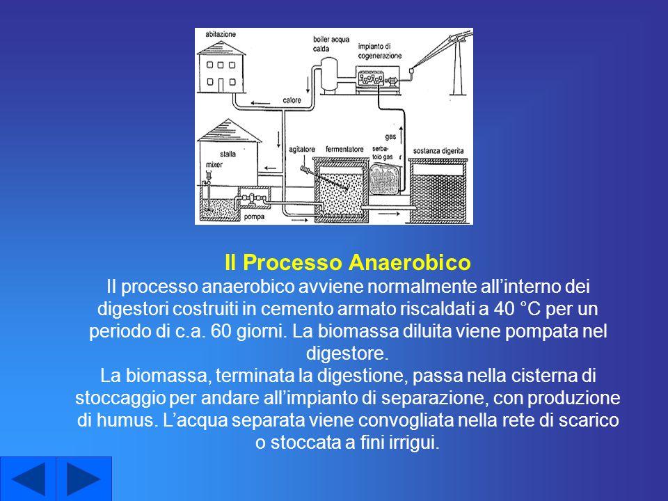Il Processo Anaerobico