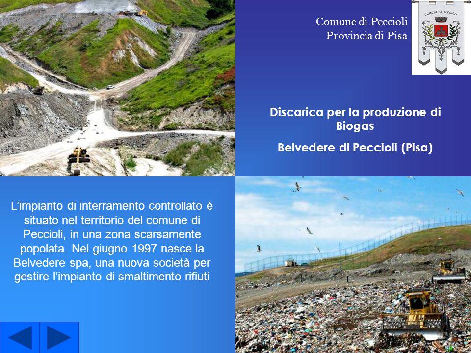 Discarica per la produzione di Biogas Belvedere di Peccioli (Pisa)