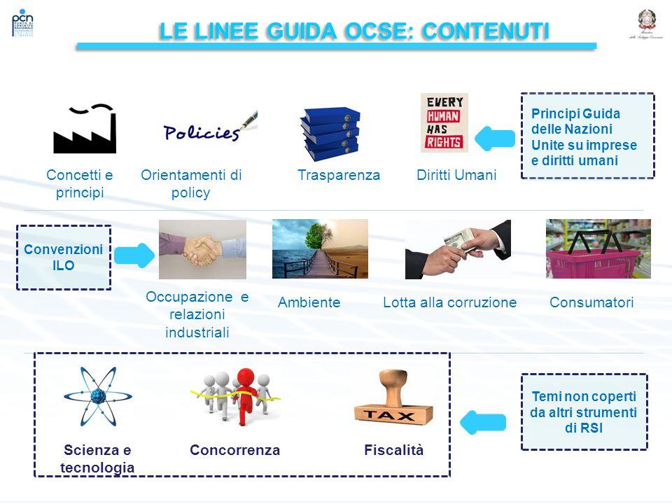 LE LINEE guidA OCSE: contenuti