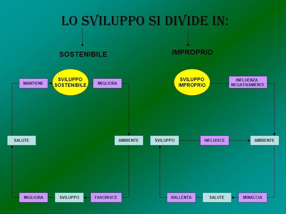 Lo sviluppo si divide in: