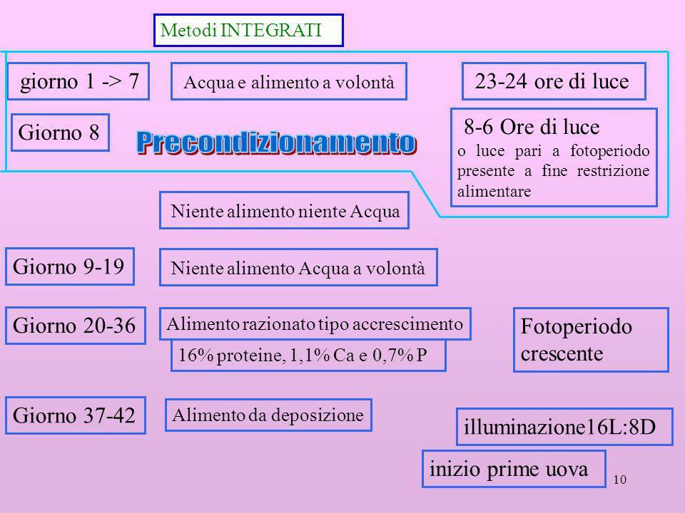Precondizionamento giorno 1 -> 7 Acqua e alimento a volontà