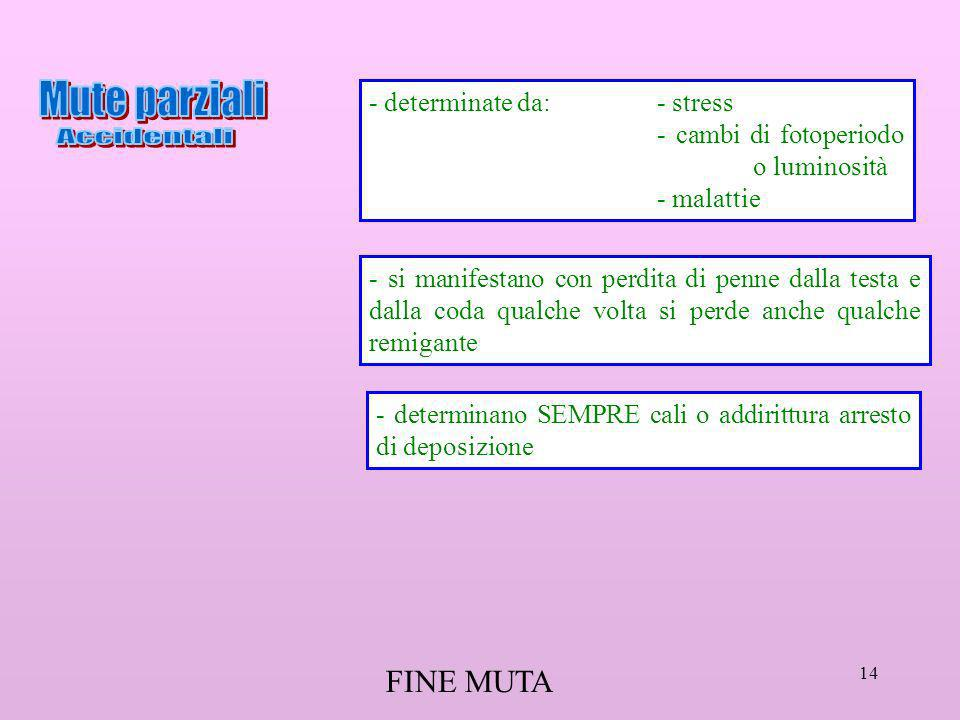 Mute parziali Accidentali FINE MUTA - determinate da: - stress