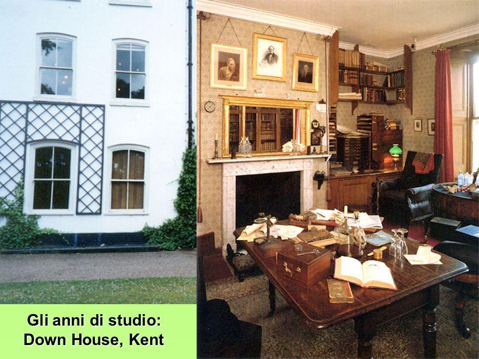 Gli anni di studio: Down House, Kent