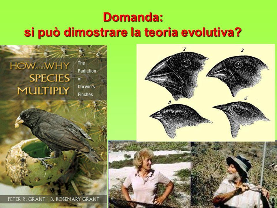 si può dimostrare la teoria evolutiva