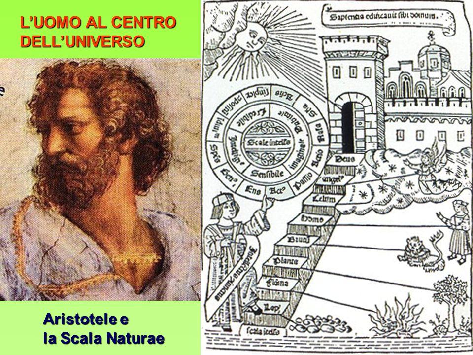 L'UOMO AL CENTRO DELL'UNIVERSO Aristotele e la Scala Naturae