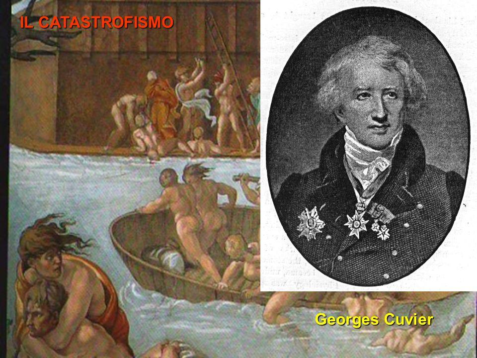 IL CATASTROFISMO Georges Cuvier