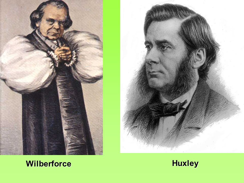 Wilberforce Huxley