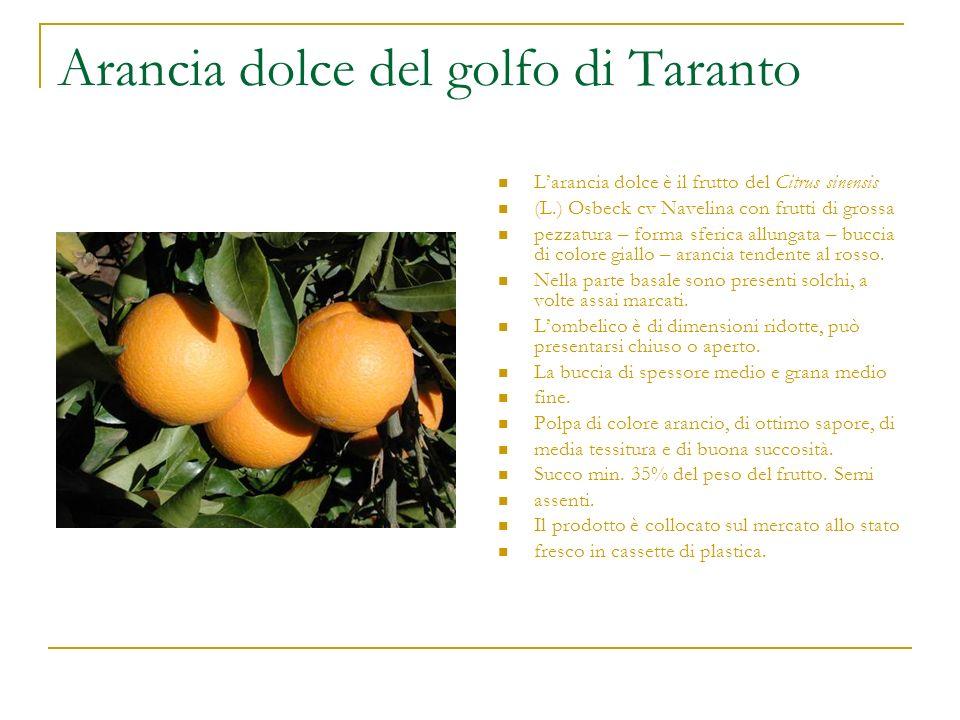 Arancia dolce del golfo di Taranto