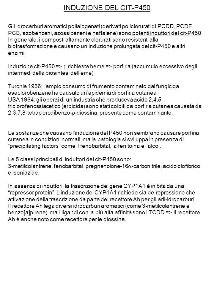 INDUZIONE DEL CIT-P450