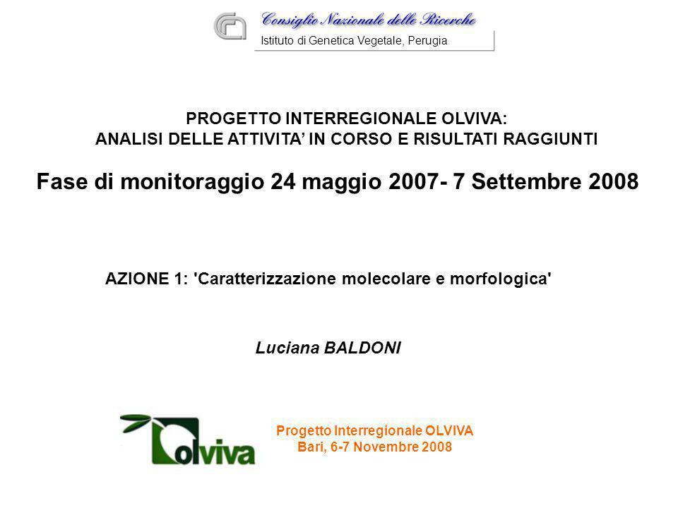 Fase di monitoraggio 24 maggio 2007- 7 Settembre 2008