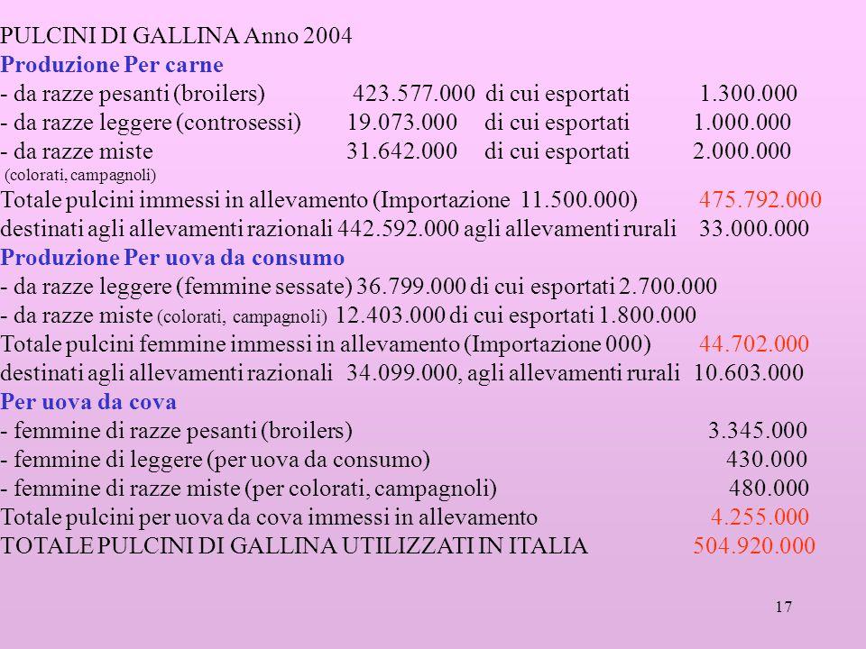 PULCINI DI GALLINA Anno 2004 Produzione Per carne