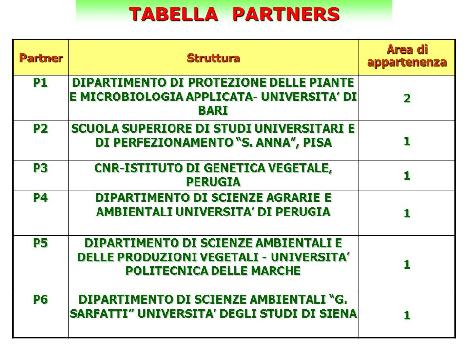 TABELLA PARTNERS Partner Struttura Area di appartenenza P1