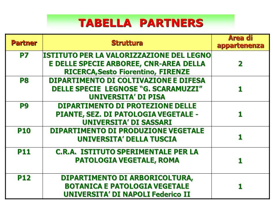 TABELLA PARTNERS Partner Struttura Area di appartenenza P7