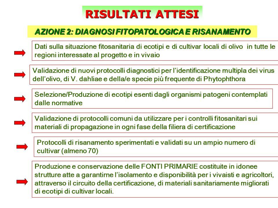 AZIONE 2: DIAGNOSI FITOPATOLOGICA E RISANAMENTO