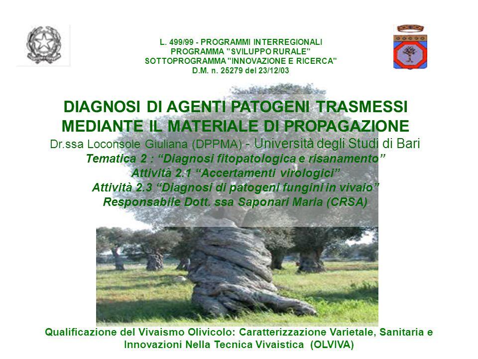 L. 499/99 - PROGRAMMI INTERREGIONALI
