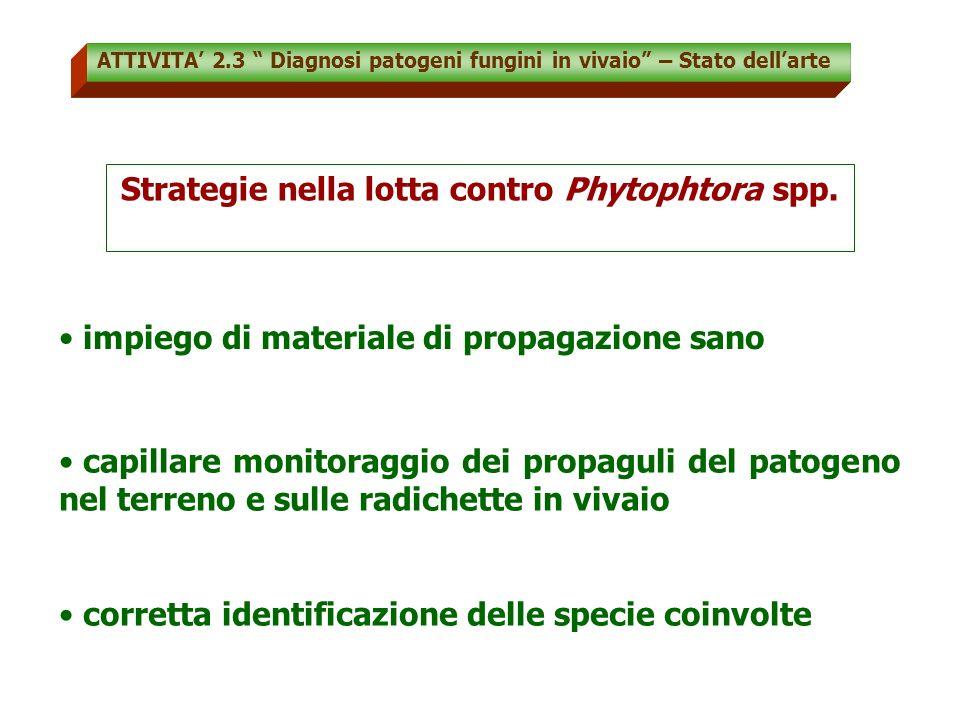 Strategie nella lotta contro Phytophtora spp.