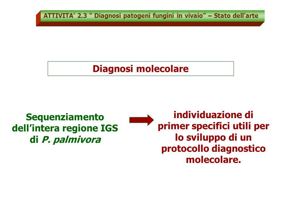 Sequenziamento dell'intera regione IGS di P. palmivora