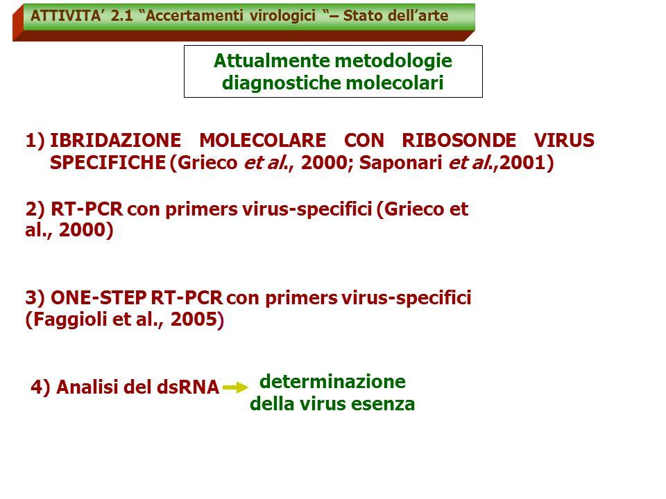 Attualmente metodologie diagnostiche molecolari