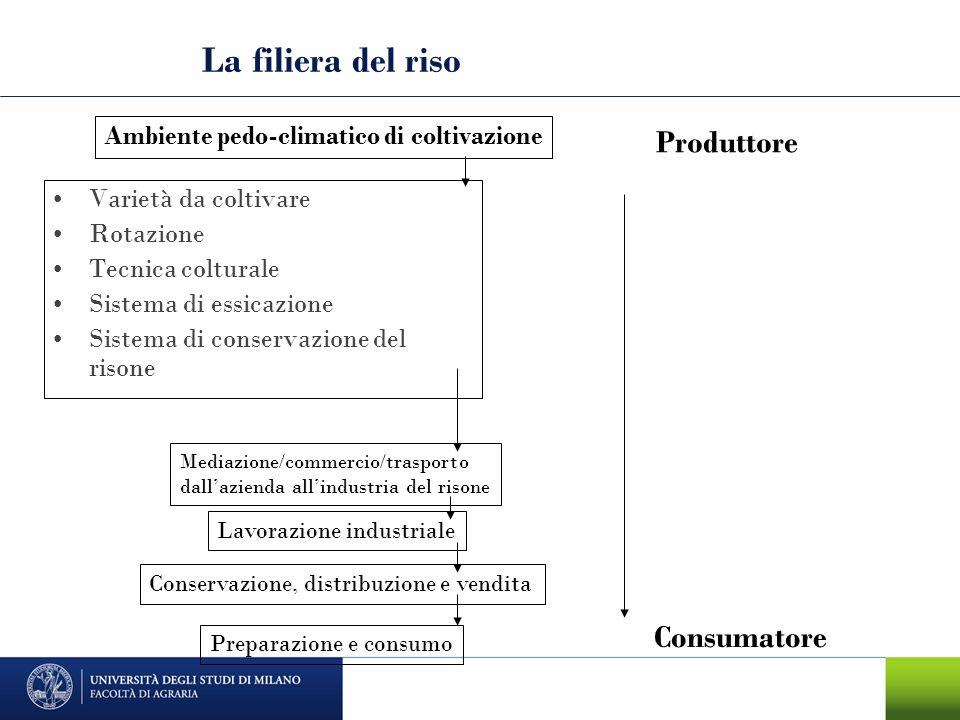La filiera del riso Produttore Consumatore