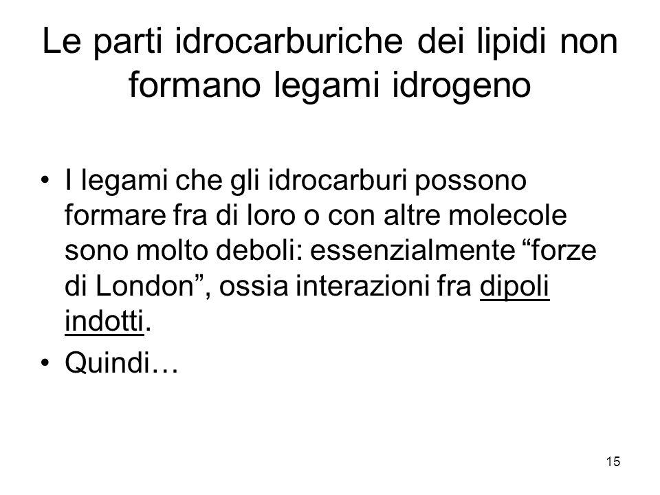 Le parti idrocarburiche dei lipidi non formano legami idrogeno