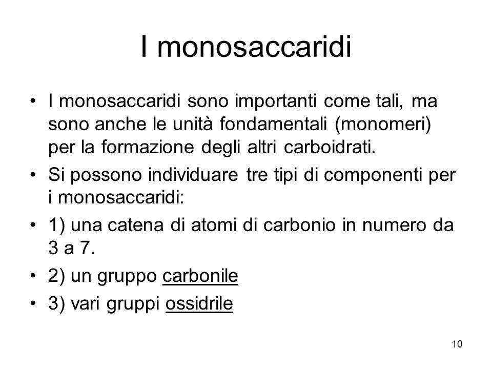 I monosaccaridi I monosaccaridi sono importanti come tali, ma sono anche le unità fondamentali (monomeri) per la formazione degli altri carboidrati.