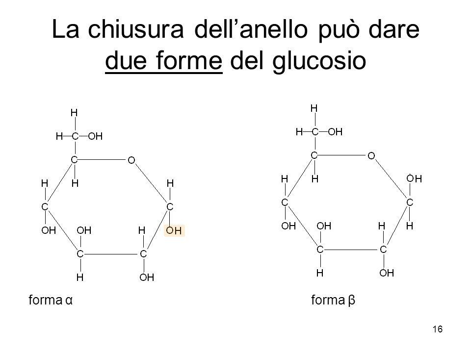 La chiusura dell'anello può dare due forme del glucosio