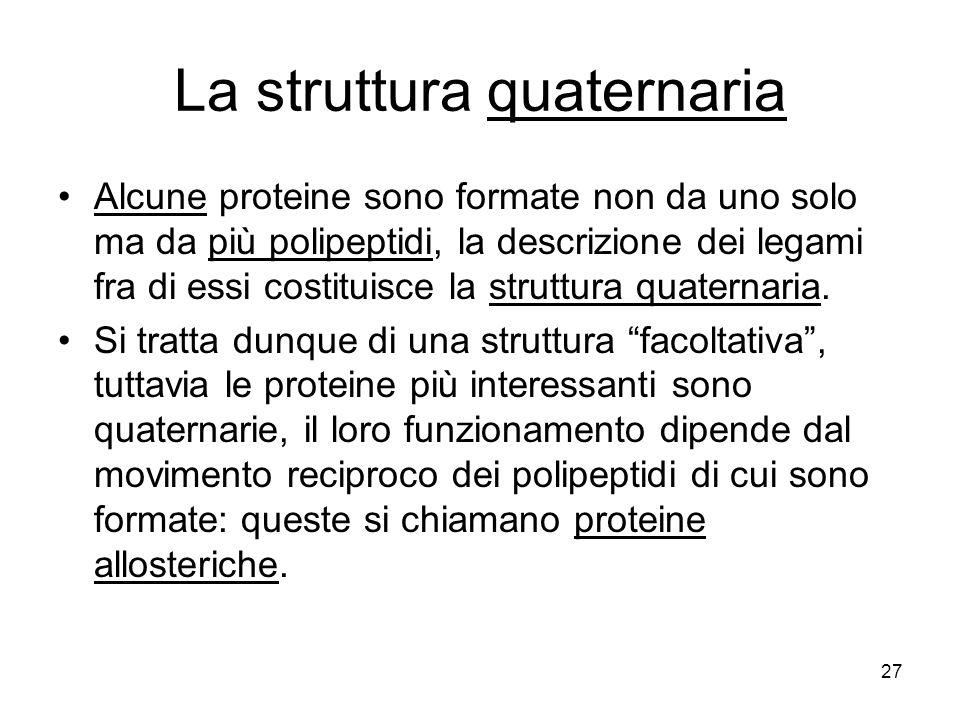 La struttura quaternaria