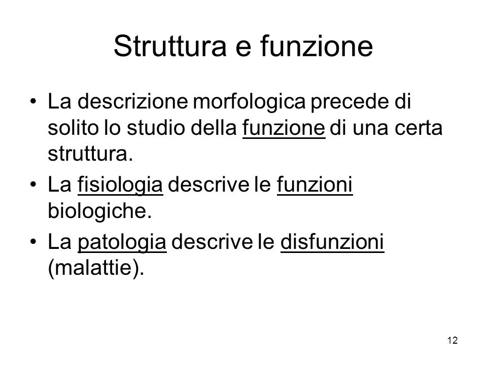 Struttura e funzione La descrizione morfologica precede di solito lo studio della funzione di una certa struttura.