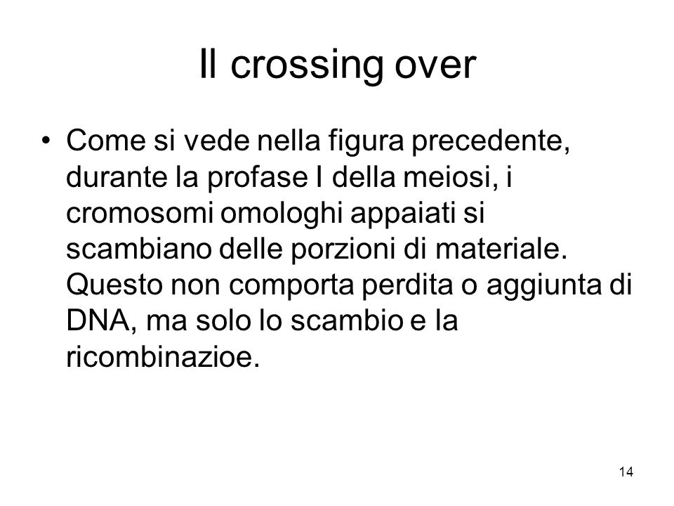Il crossing over
