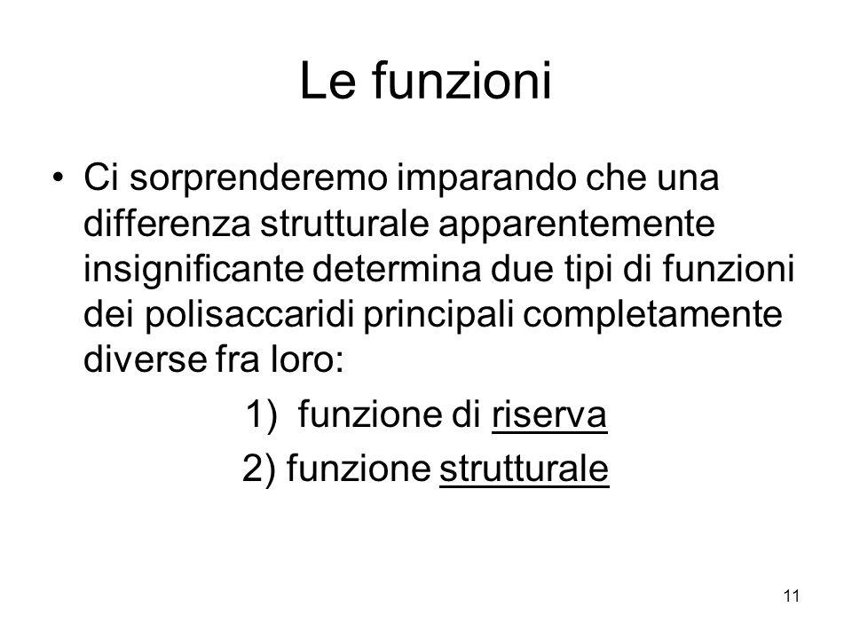 2) funzione strutturale