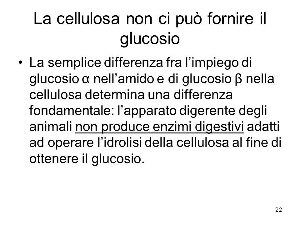 La cellulosa non ci può fornire il glucosio
