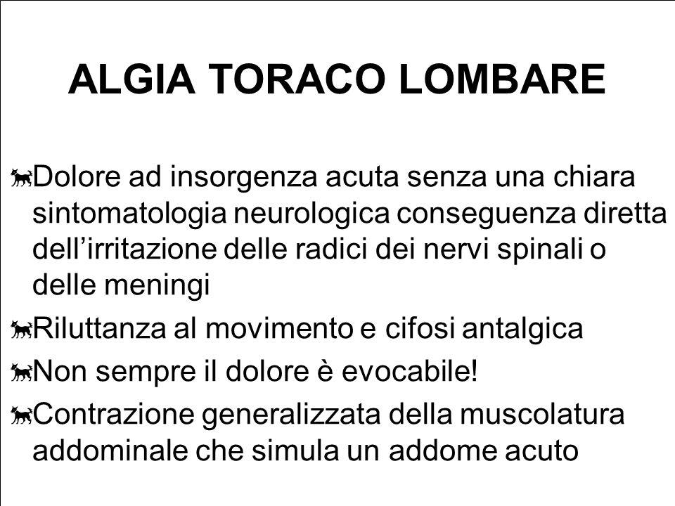 ALGIA TORACO LOMBARE