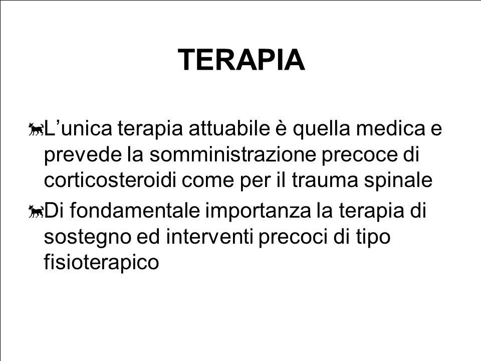 TERAPIA L'unica terapia attuabile è quella medica e prevede la somministrazione precoce di corticosteroidi come per il trauma spinale.