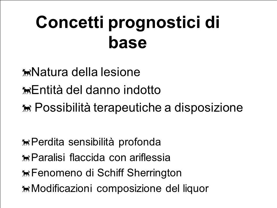 Concetti prognostici di base
