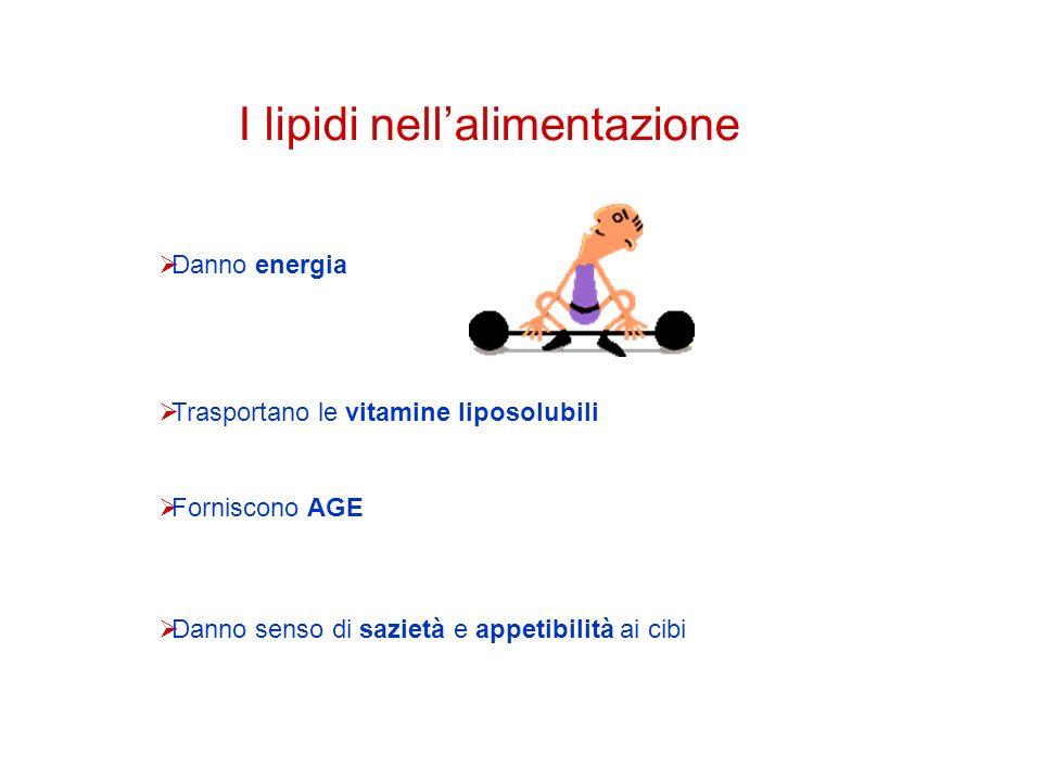 I lipidi nell'alimentazione
