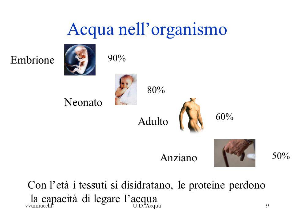 Acqua nell'organismo Embrione Neonato Adulto Anziano