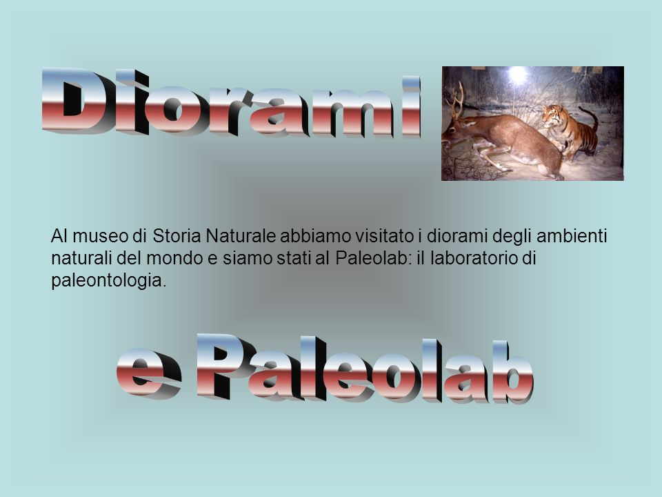 Diorami